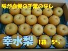 ★100円スタート★千葉梨幸水 1箱5㌔中小
