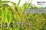 平成27年度 新米 魚沼産コシヒカリ 玄米30kg 特A 天日米 希少品