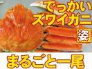 北海道 ズワイガニ姿 オホーツク海 【6尾まで同梱可】