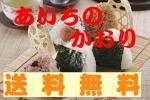 【送料無料】28年産!農家保有米/愛知・あいちのかおり 玄米10㎏
